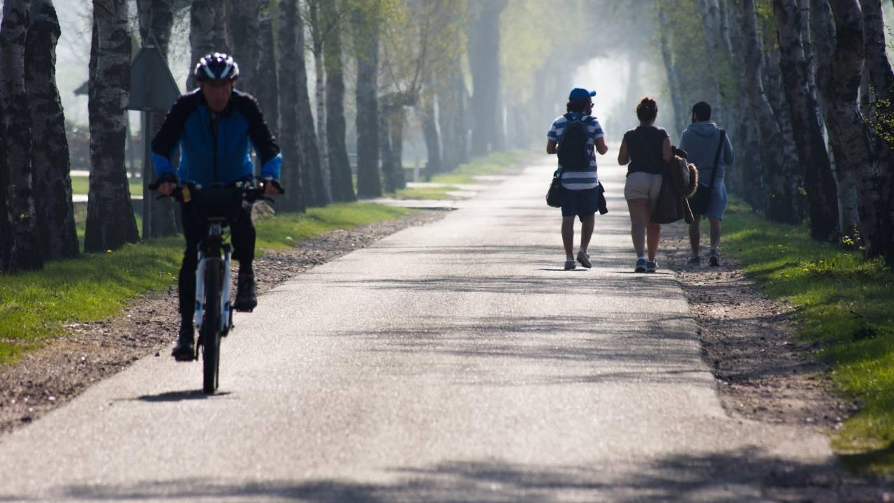 Nachzügler auf der letzten Etappe nach Nijmegen