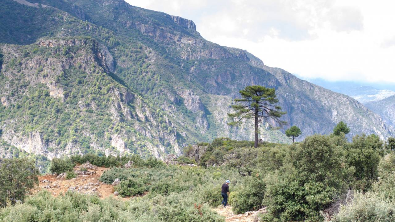A view of the Talassemtane National Park, home to endangered species including the bearded vulture and the Barbary macaque monkey.
