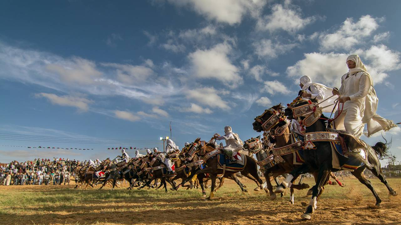Equestrian tradition in Libya