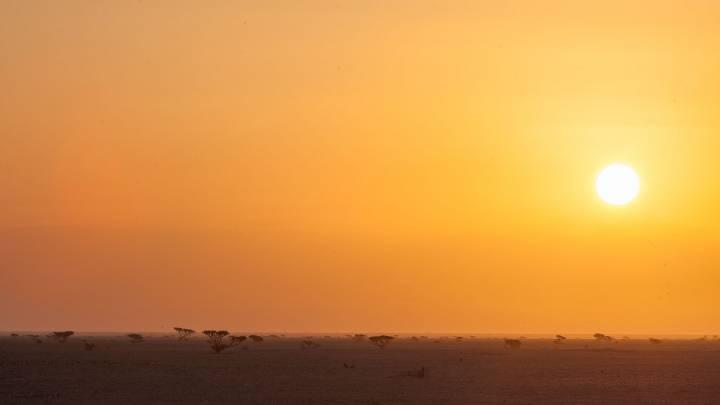 Energiestrategien der Golfstaaten