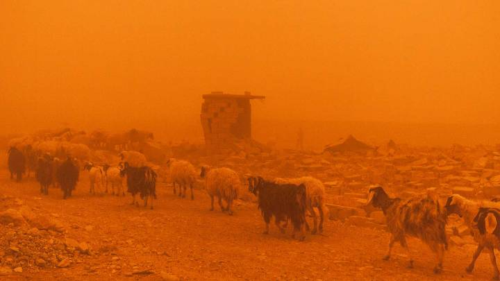 Agriculture, conflict and climate change in Iraq
