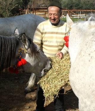 Die Pferdekutschen auf den türkischen Prinzeninseln