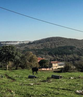 Agacli countryside