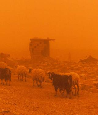 Landwirtschaft und Klimawandel im Irak